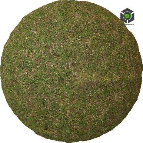 Grass_Uncut_oeecL20_surface_Preview (3ddanlod.ir)