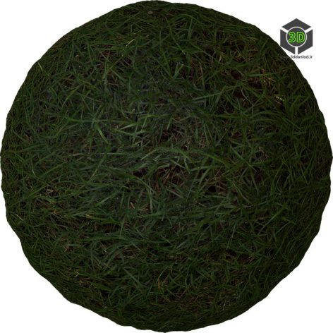 Grass_pe1j3ds0_surface_Preview (3ddanlod.ir)