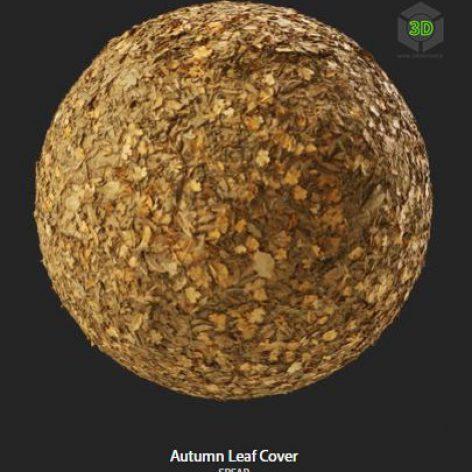 autumn_leaf_cover (3ddanlod.ir)