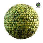 green_creature_skin_32_59_render (3ddanlod.ir)