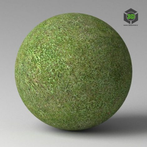 Grass_C_200cm.mat (3ddanlod.ir)