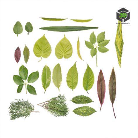 Plant_Assorted_ocsoJ2_atlas_Preview (3ddanlod.ir)