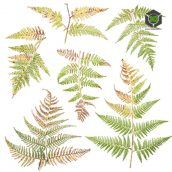 Plant_Ferns_okdr22_atlas_Preview (3ddanlod.ir)