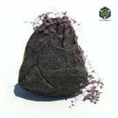 136_rocks_n_ivy_v1 (3ddanlod.ir)