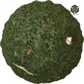 Grass_Wild_pjwon0_surface_Preview (3ddanlod.ir)