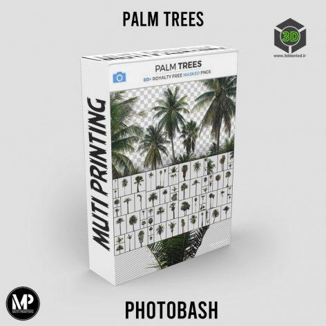 PhotoBash - Palm Trees cover (3ddanlod.ir)
