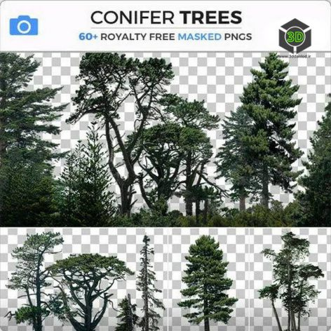 Photobash – Conifer Trees cover (3ddanlod.ir)