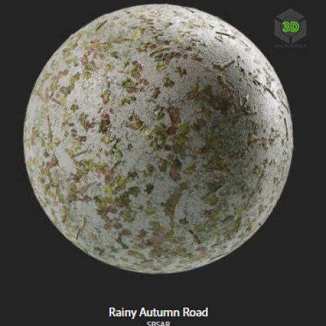rainy_autumn_road (3ddanlod.ir)