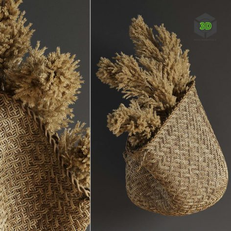 Pampas Flower in Hand Basket(3ddanlod.ir) 1668