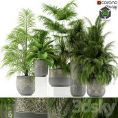 Plants Collection 147 Handmade Pots East Style(3ddanlod.ir) 050