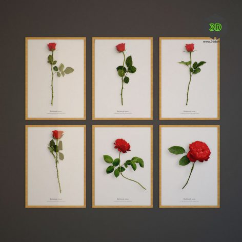 Beloved rose 135 (3ddanlod.ir)